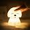 Thumbnail: Veilleuse Chien blanche Lil' Dog - ALILO