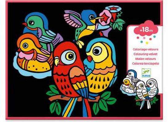 Coloriage velours Bébé Oiseaux - DJECO