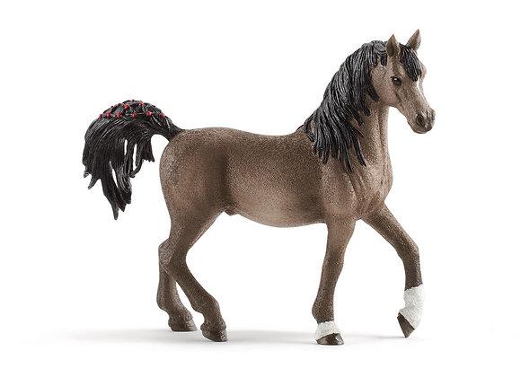 Figurine Etalon Arabe - SCHLEICH