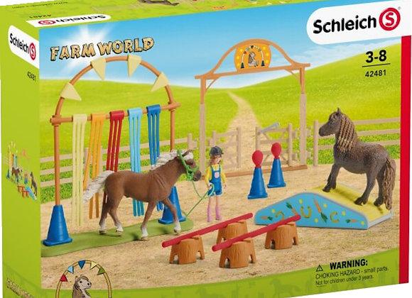 Centre d'entrainement pour poney - SCHLEICH