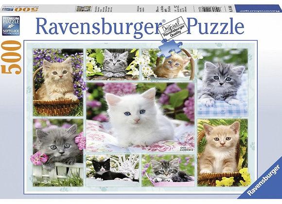 Puzzle Les Chats 500 pièces - RAVENSBURGER