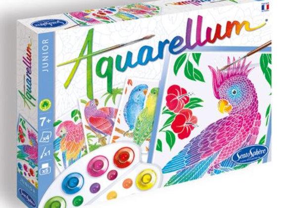 Aquarellum Junior Perroquets - SENTOSPHERE