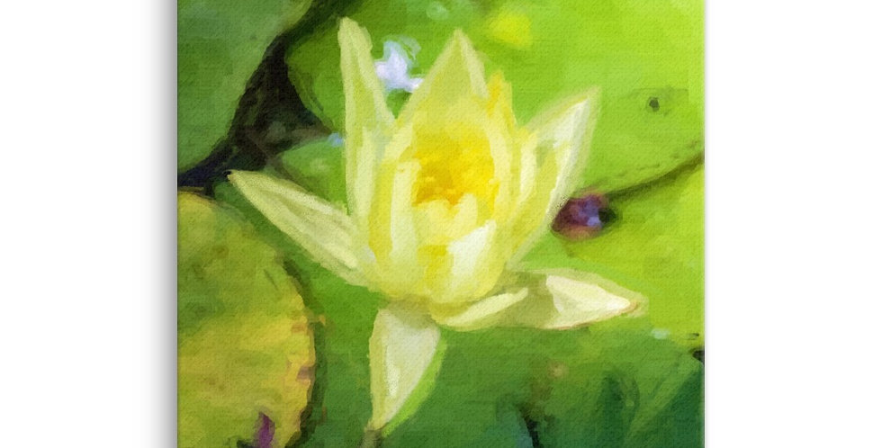 """Lotus"" Canvas Print"