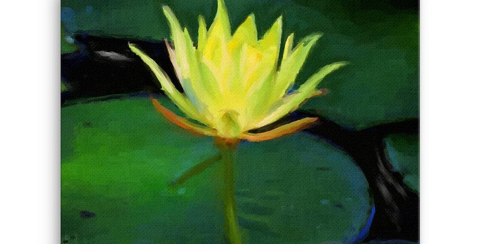 """Lotus IX"" Canvas Print"