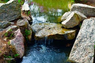 Zen Brook II