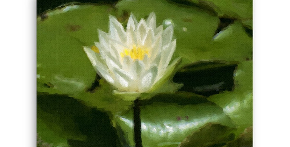 """Lotus III"" Canvas Print"