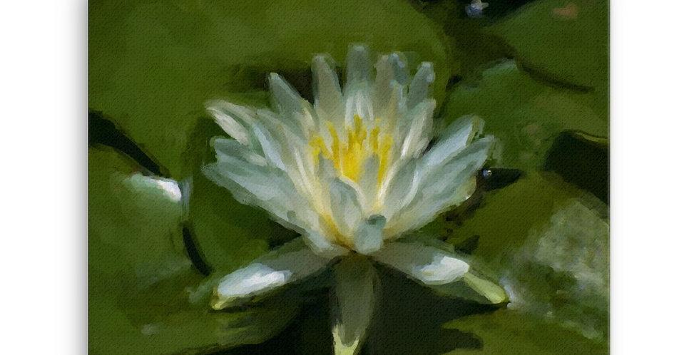 """Lotus VII"" Canvas Print"