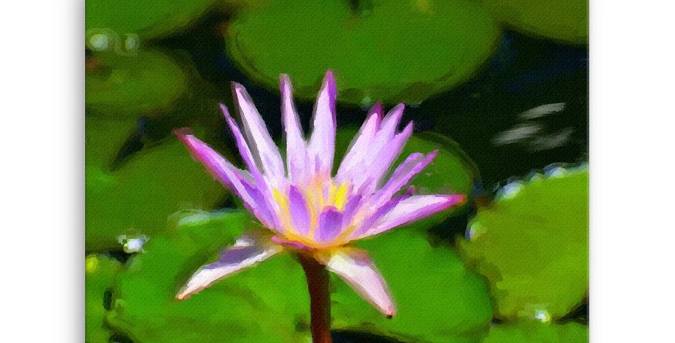 """Lotus IV"" Canvas Print"