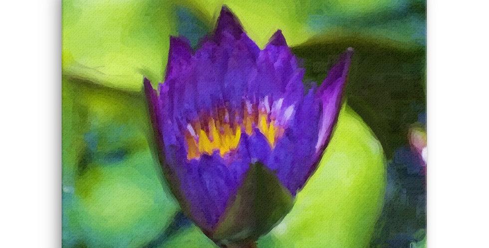"""""""Lotus VIII"""" Canvas Print"""