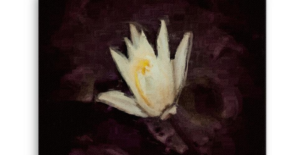 """Lotus II"" Canvas Print"