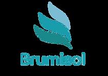 Logo BRUMISOL