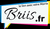 logo briis sous forge.png