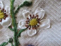 Botanisch borduren, de Braam