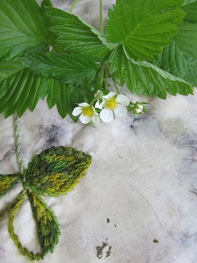 botanisch borduren, aardbei