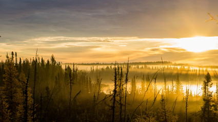 Autumn Sunrise in the Northern Forest