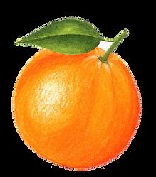 mandarinasinfondo.png