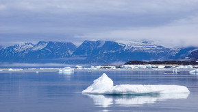 Sea Ice in Pangnirtung Fjord