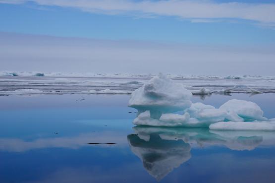 Sea Ice Sculpture