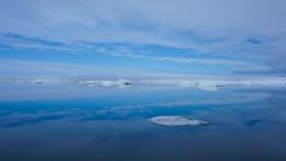 Sea Ice Reflections