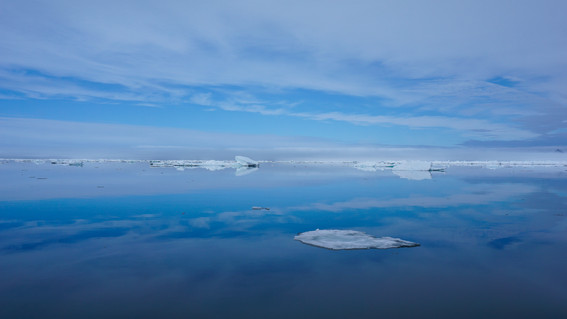 Sea Ice Reflections