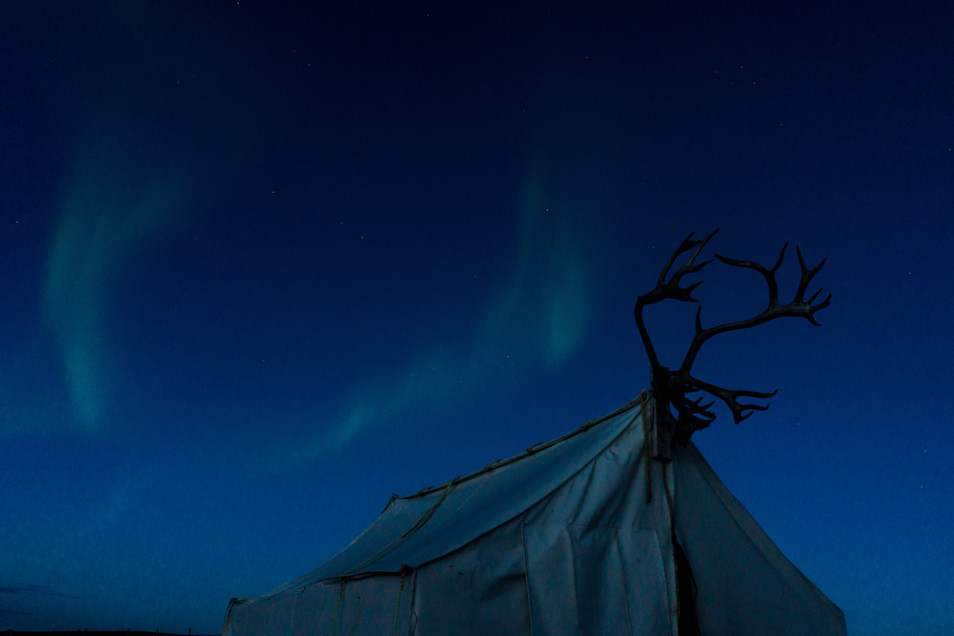 Lights over the Cook Tent