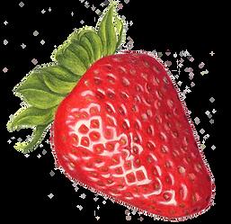 frutilla sin fondo.png