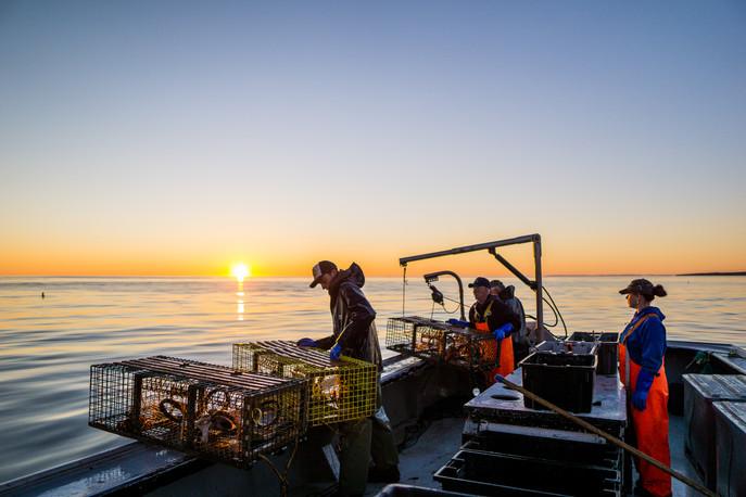 Calm Morning Lobster Fishing