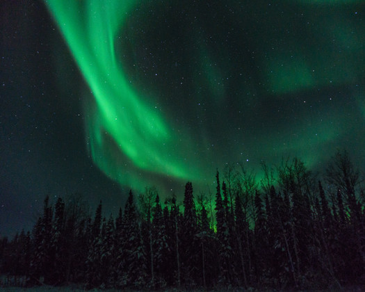 Winter Aurora Dancing