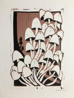 Year of the Mushroom