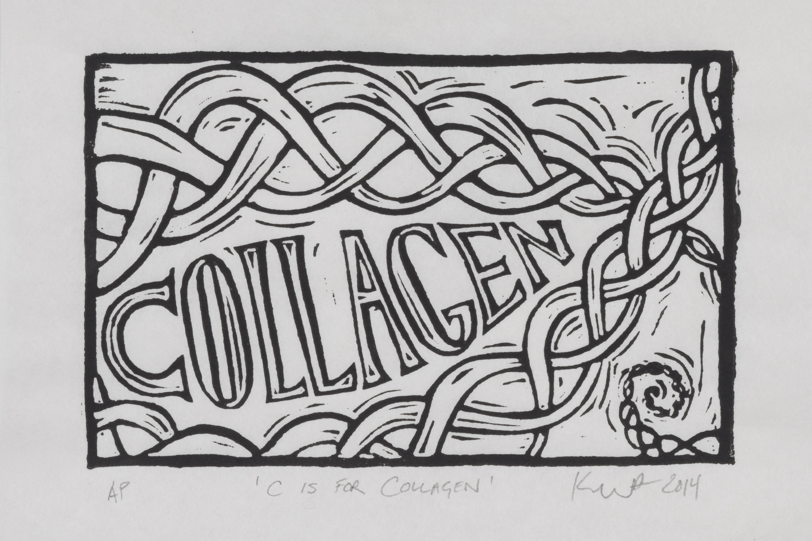C is for Collagen