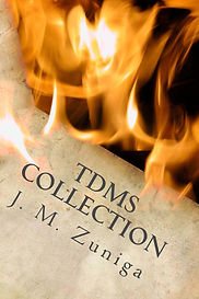Book cover TDMS Collection. Brown paper on fire.