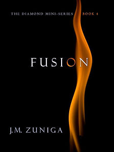 Book Cover Fusion. Black with long orange flame.