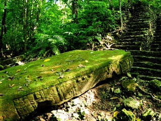A Mayan Gem Worth More Than Gold