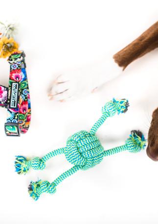 Luckylovedog swuare-2.jpg