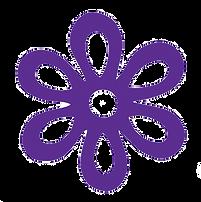 Purple Trsp
