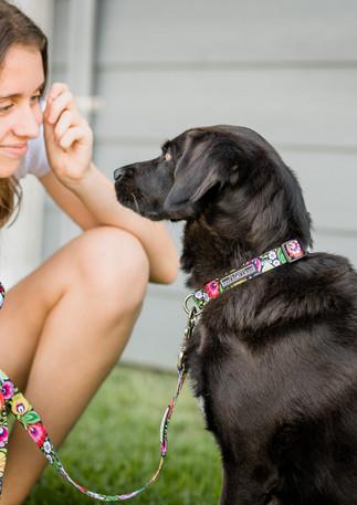 Luckylovedog - Twinkle-9.jpg