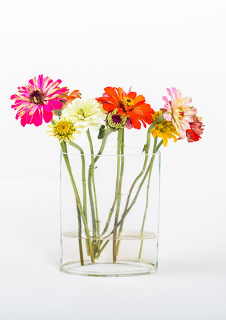 flower flatlay