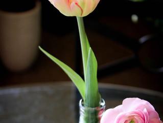 Tips para que tus flores duren más tiempo