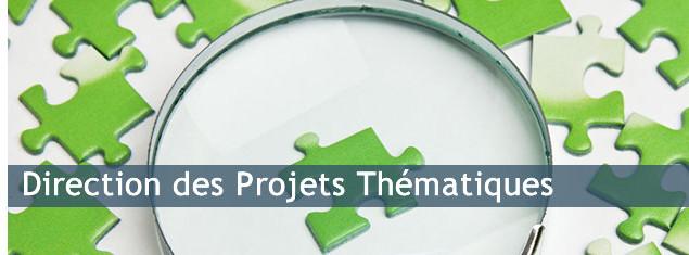 Commerçants, indépendants, et porteurs de projets : les aides financières de la Direction des Projet