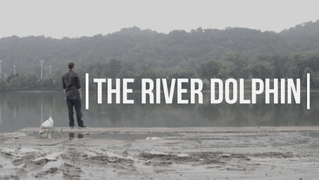 The River Dolphin