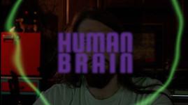 Human Brain Thumbnail.jpg