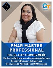 pmr4master_MERM.jpg