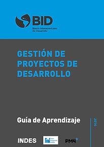 Guía Práctica -PM4R-Professional-min.jpg