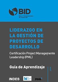 Guía Práctica -PM4R-Leadership-min.jpg