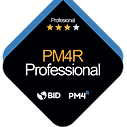InsigniaPM4RProfessional.png