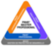 TT-PM4R_Professional_web.png