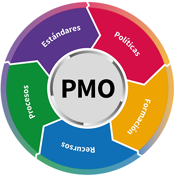 ciruclo PMO01-min.png