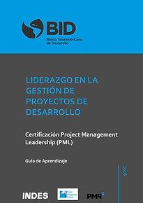 Guía_Aprendizaje_PM4R_leadership.jpg