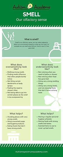 What is our sense of Smell Infographic