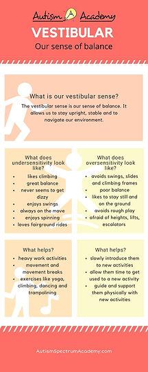 What is our Vestibular Sense Infographic